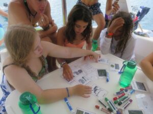 SeaTrek BVI FATHOMS students participate in marine biology activities to learn about water quality and plankton.
