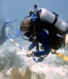 SeaTrek BVI FATHOMS students learn to scuba dive and conduct scientific dives to monitor the health of the coral reefs of the British Virgin Islands.