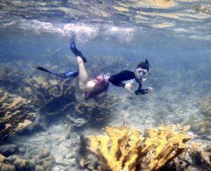 SeaTrek BVI FATHOMS students snorkel and explore the marine biology of the British Virgin Islands.