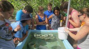 Rachel Welicky introducing students to wet labs.